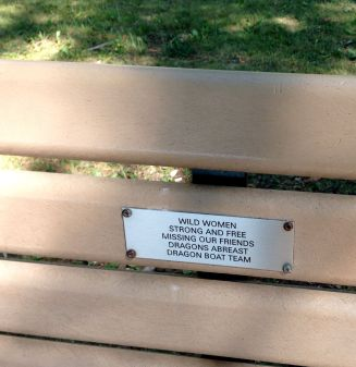 Memorial plaque to dragon-boaters, on a shady boardwalk bench.