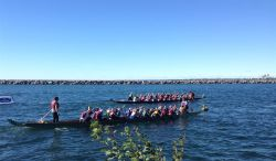 """Teams paddle west to the starting gate. """"City west"""" in the background. What a gorgeous day!"""
