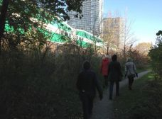 We keep walking as a GO train speeds past.