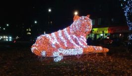 Ah, Baekho! You gorgeous Korean tiger of light - thank you for making our neighbourhood even more wonderful! Haven't had the pleasure yet? He's usually lit up for a couple of months, so you can still visit him at Christie and Bloor. Especially lovely at night.