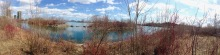 panorama from HBBH including TO skyline, in centre, and lots of dogwood