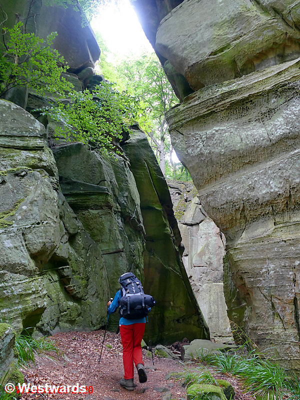 Narrow passage on the Mullerthal trail in Luxembourg