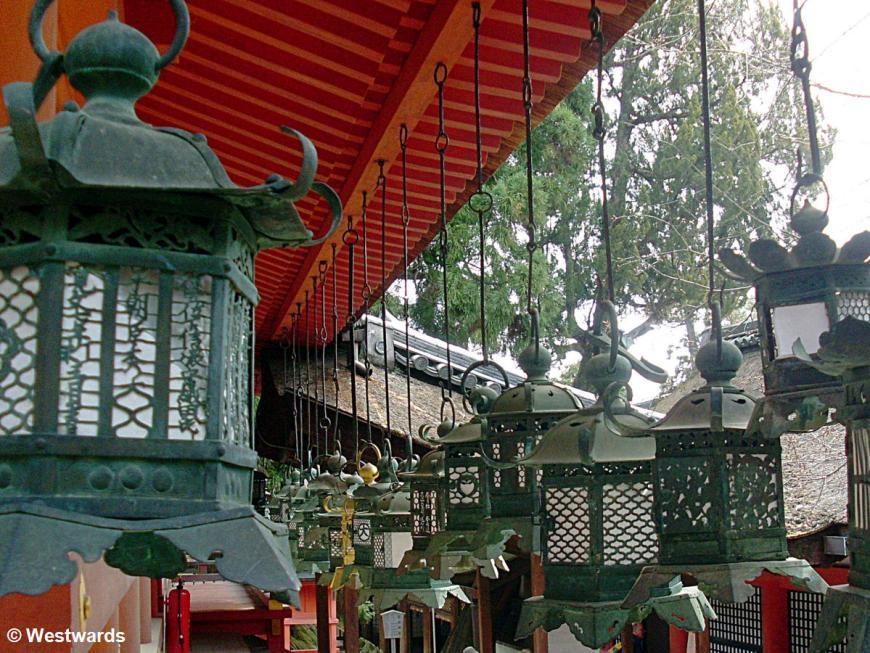 20130326 Nara Kasuga shrine SL371109