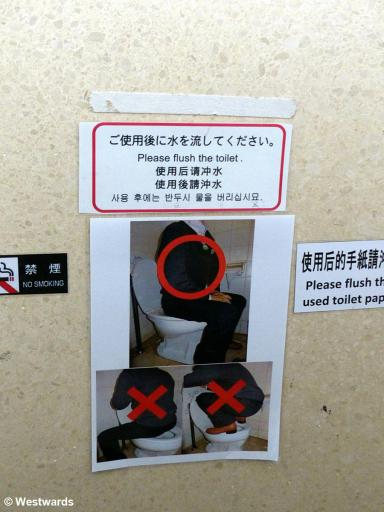 Pictures and multilingual explanation: Person sitting on a toilet