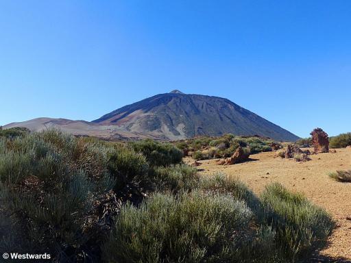20161216 Teide Nationalpark Teide P1370730