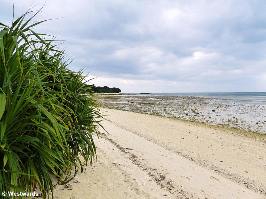 20170227 Taketomi Kondoi Beach P1390403