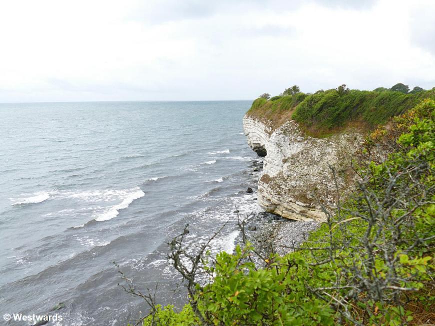 The Danish coastline at Stevns Klint
