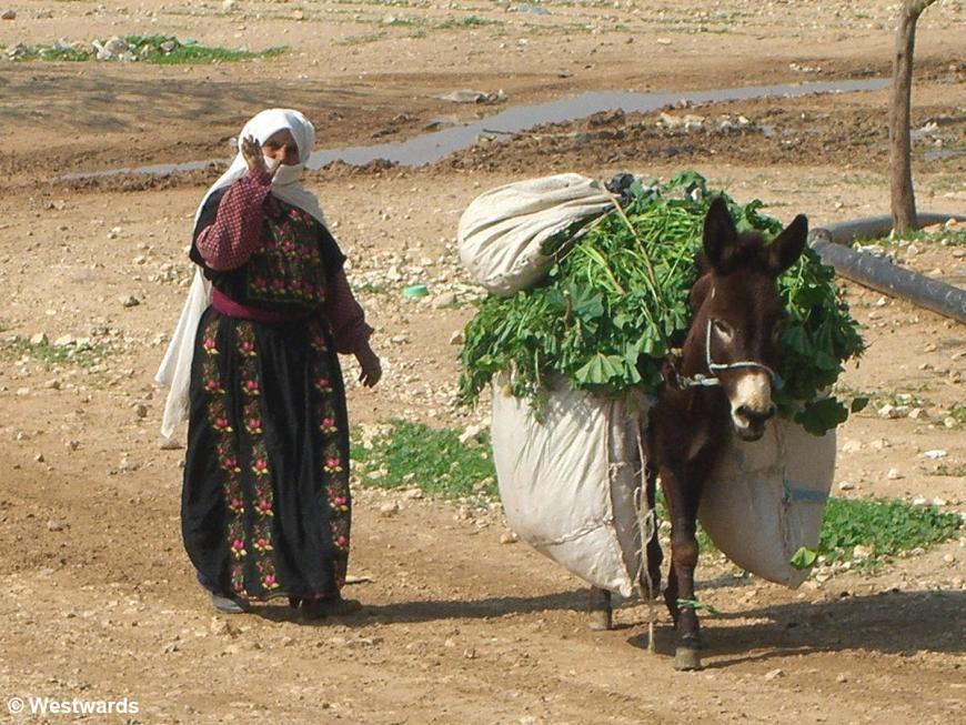 20070211 Jordantal Frau mit Esel2