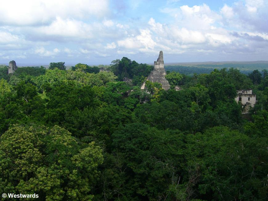20071129 Tikal view from temploV 1568