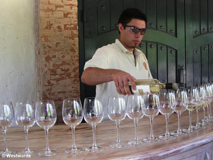 wine tasting at Concha y Toro winery, Chile