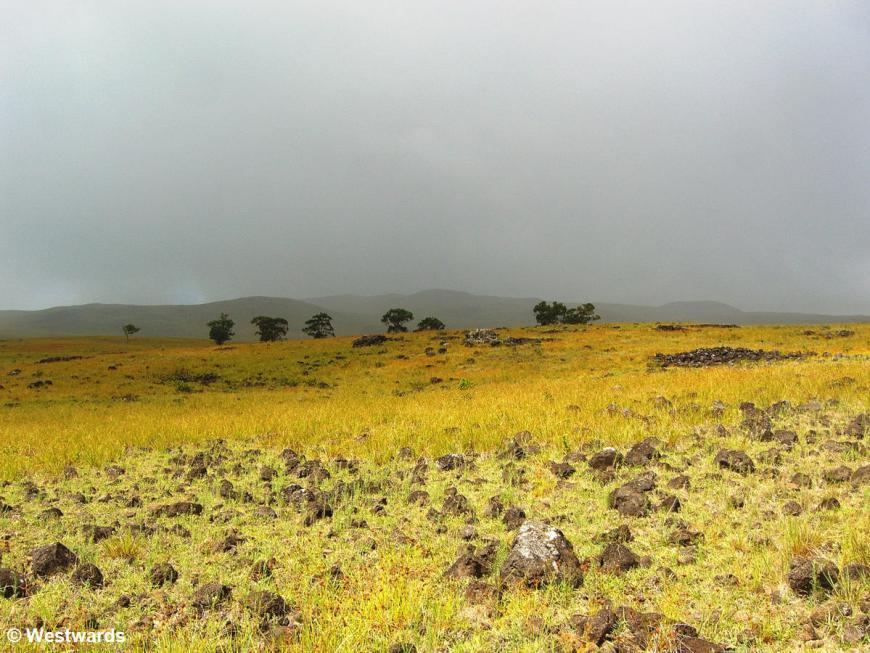 Anakena to Hanga Roa coastal walk, Rapa Nui