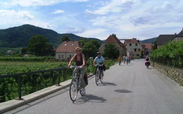 cyclist on the Danube cycling trail