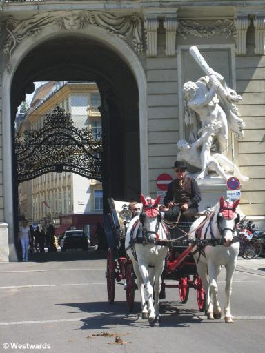 Horsecart / Fiaker in Vienna