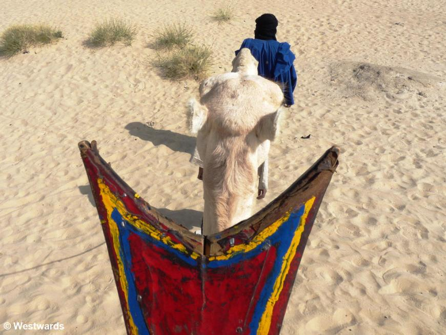 20090105 Timbuktu camel ride 1030015