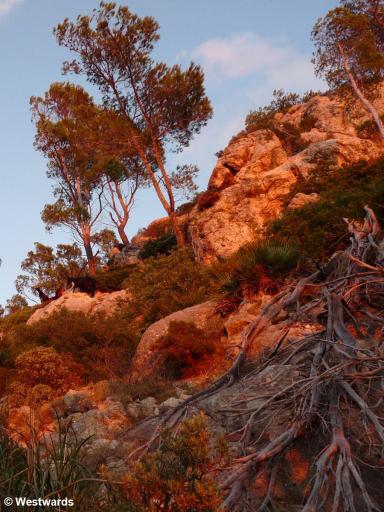 sunset in Mallorca mountains
