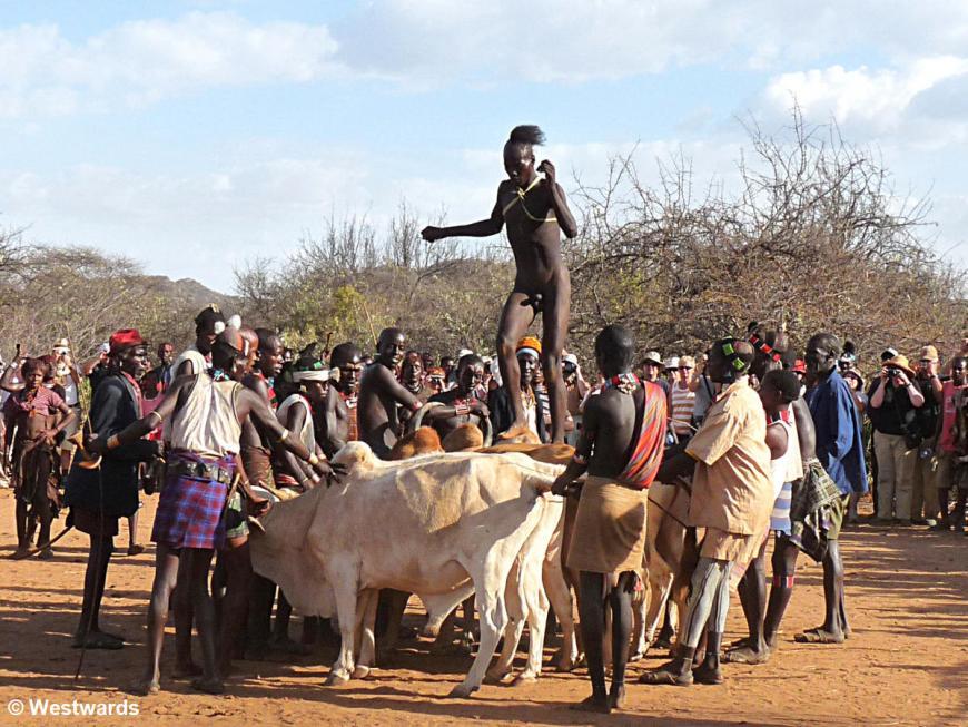 Turmi bull jumping ceremony, Omo Valley