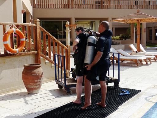 putting on diving gear in Soma Bay