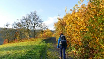 Hiking along the Romantic road