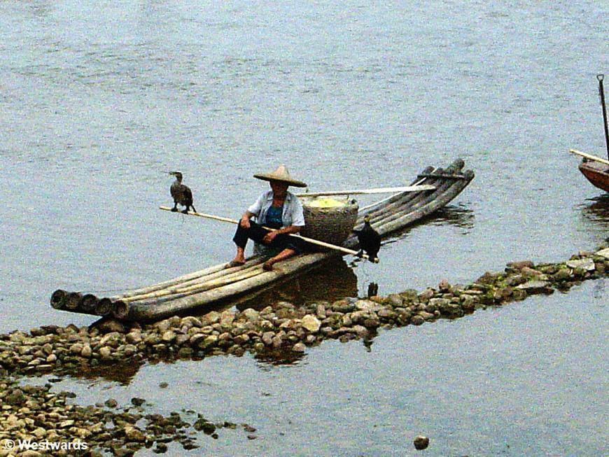 Cormorant fishing on the Li River, Yangshuo