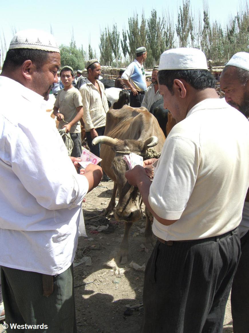 Uighurs selling a cow in Hotan