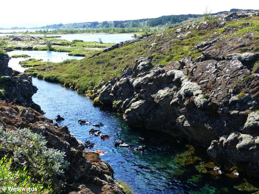 Snorkelling a fissure in Thingvellir National Park