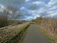 Along the Withern