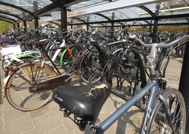 Bikes at Enkhuizen station