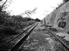 BW.-01.-Rails-to-the-Ropery