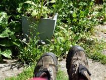 Gardener at work. 03. BW.