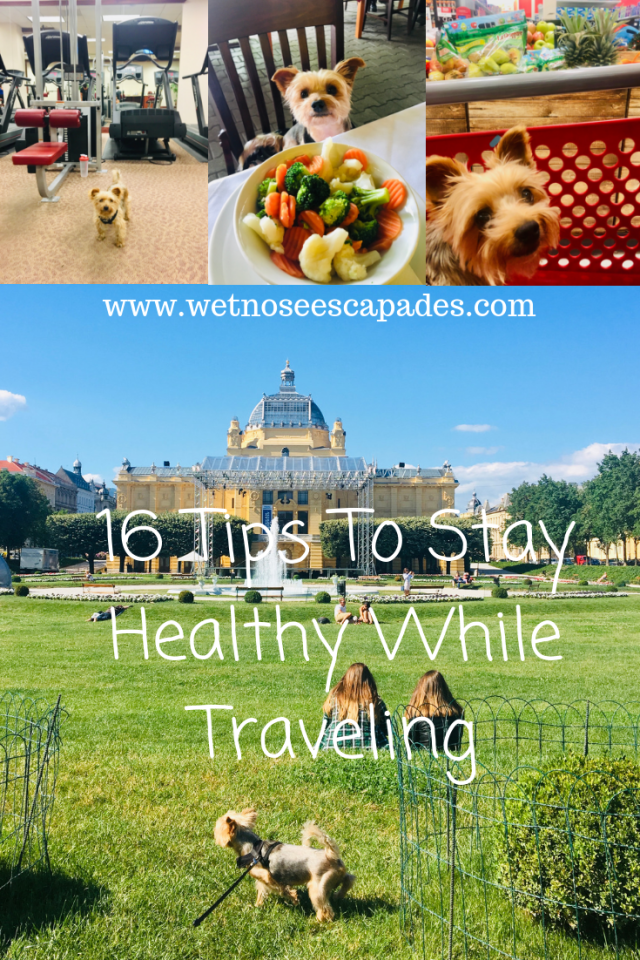 16 Tips To Stay Healthy While Traveling