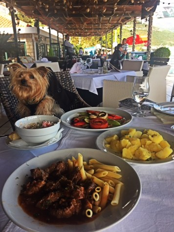 Best Food in Budva: My Top 10 Picks!