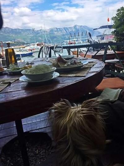 10 Best Food in Budva, Montenegro_traveling yorkie