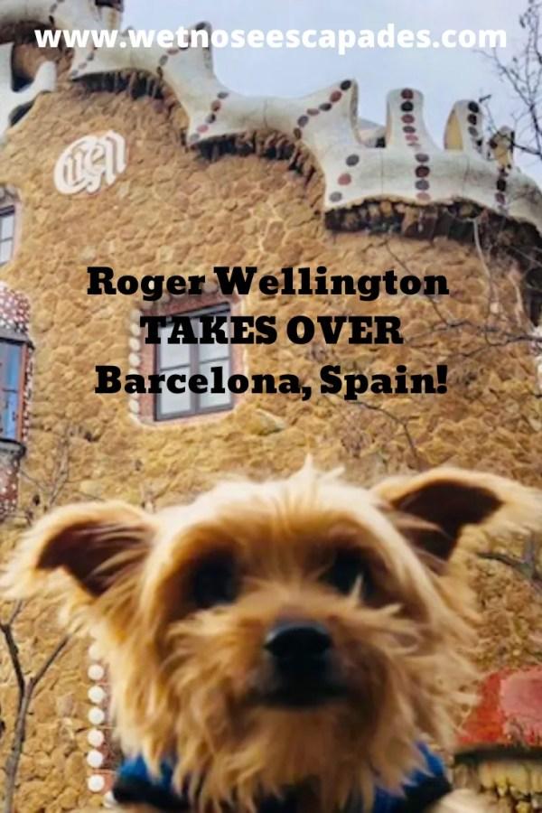 Roger Wellington TAKES OVER Barcelona, Spain!