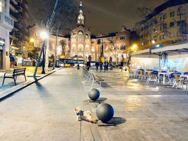 Roger Wellington conquers Barcelona, Spain! (VIDEO)