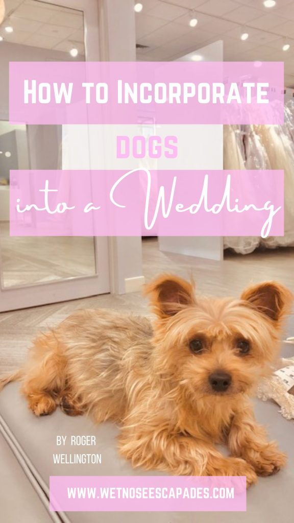 how to incorporate dogs into a wedding