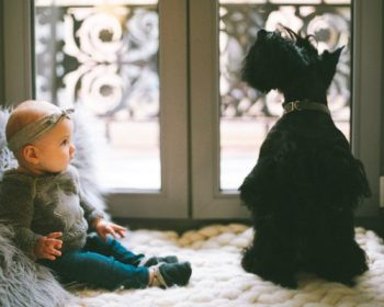 Why Parents Need to STOP Sending their Kids' Pictures to their Dog-Loving Childless Friends