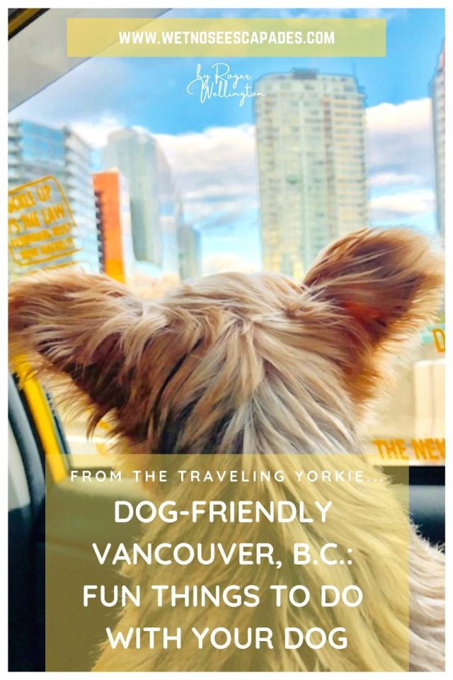Dog-Friendly Vancouver, B.C.