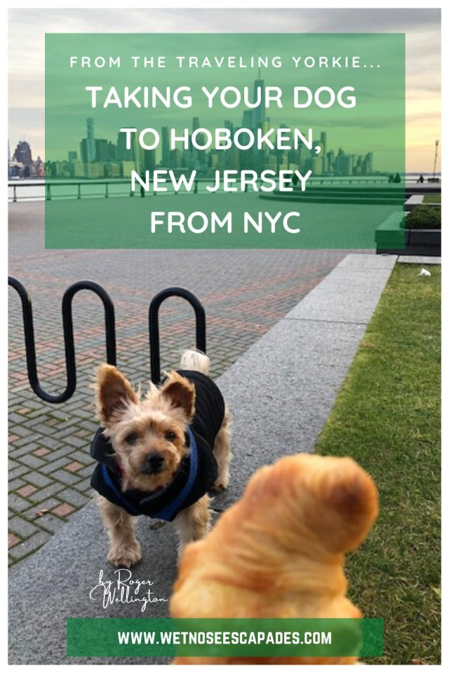 Taking Your Dog to Hoboken, NJ from NYC