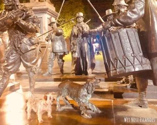 dog friendly Rembrandtplein Square Night Watch