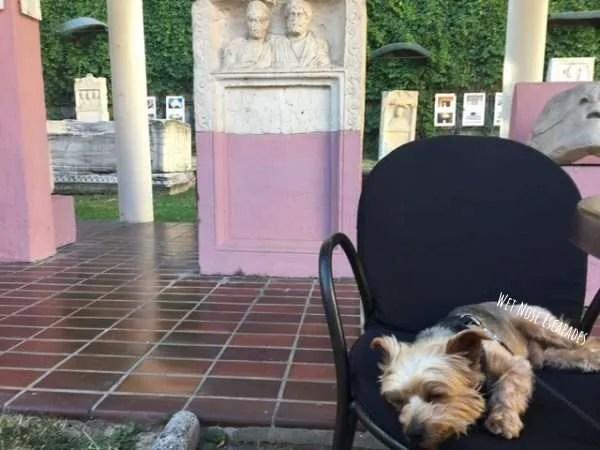 Dog Friendly Archaeological Museum Zagreb Croatia