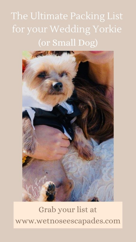 The Ultimate Packing List for your Wedding Yorkie (or Small Dog)