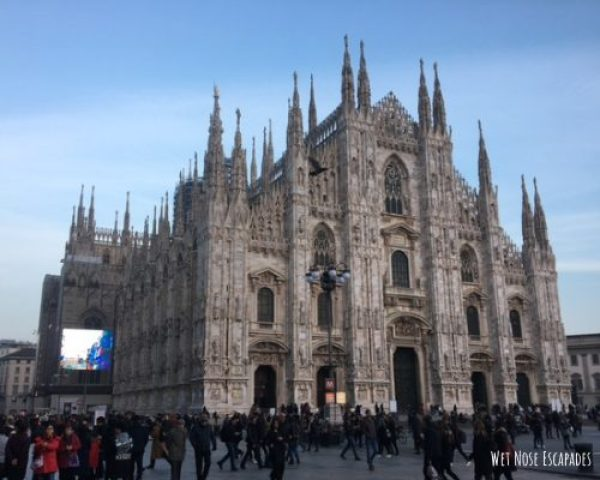 dog friendly Milan Cathedral in Italy