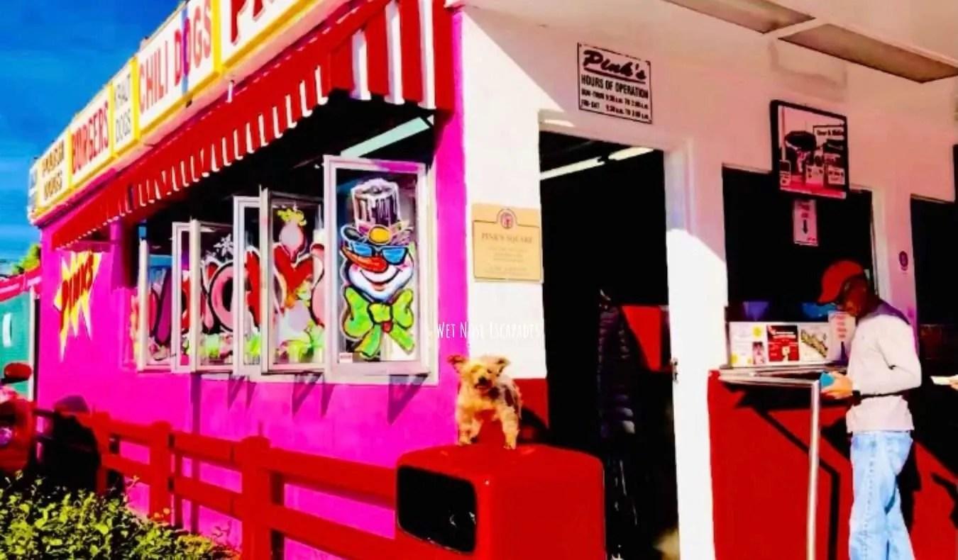 Yorkie dog at Pink's Hollywood, dog-friendly restaurants in LA