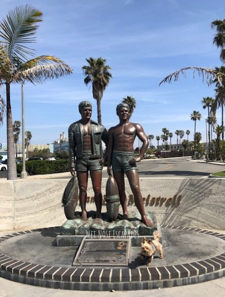 Yorkie dog with Bill & Bob at Seaside Lagoon, Redondo Beach CA