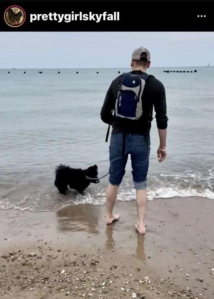 dog friendly beaches chicago