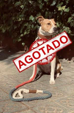 correa_perro_bicolor_wetopdogs
