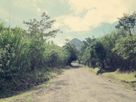 Weg zum alten Lavastrom