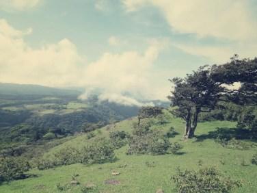 Blick über Monteverde
