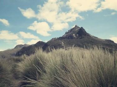 Spitze des Rucu Pichincha