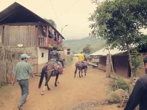 Von Congon ging's los mit den Pferden & Mullas